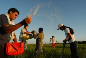 Programa da Juventude Rural Emater-MG